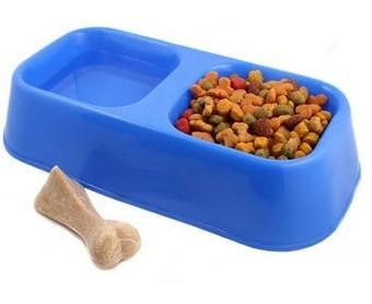 croquettes gratuites pour chiens et chats