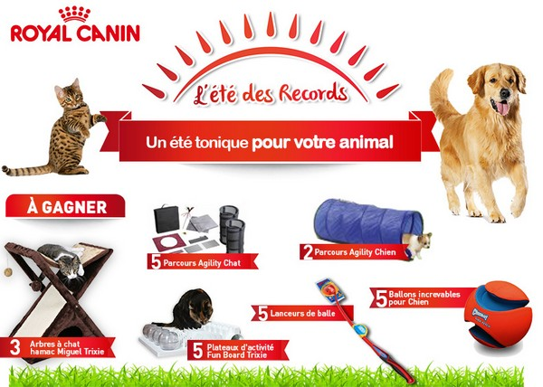 royal canin jeux et jouets pour chien chat gagner. Black Bedroom Furniture Sets. Home Design Ideas
