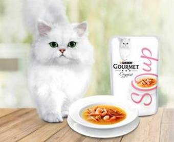 Grand test PURINA : 2500 packs offerts pour chat
